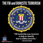 domestic terrorism articles